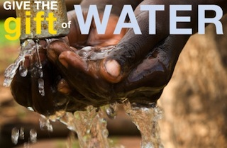 A Gift of Clean Water, Sorensen Campaign
